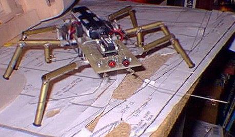 MKI Cockroach
