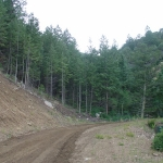 one of our ravines