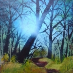 Forest Sunlight (s)